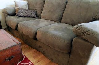 cat urine out of couch cushions 1000 ideas about pet odors on pinterest pet odor