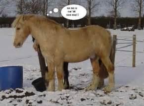 Images pictures comments graphics scraps for facebook google plus