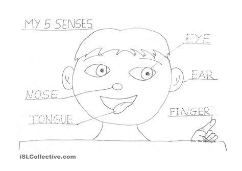 5 Senses Coloring Pages by Coloring Pages Of 5 Senses Az Coloring Pages Preschool