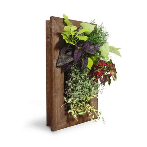 Vertical Wall Garden Kit Grovert Vertical Garden Kit