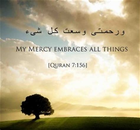 quran quotes  peace quotesgram