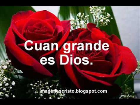 imagenes de flores llamadas pensamientos imagenes cristianas de rosas youtube
