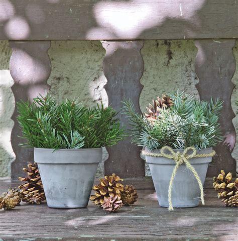 pot plant christmas altar du sapin en pot d 233 co no 235 l ext 233 rieur branche sapin deco noel pot sapin pomme pin