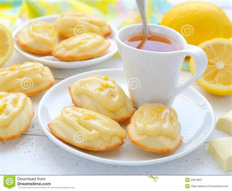 the french cookies madeleine royalty free stock
