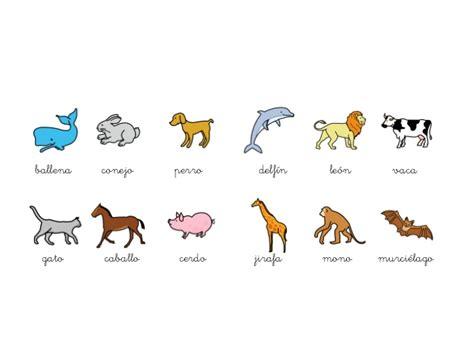 imagenes de animales viviparos y oviparos im 225 genes de animales ov 237 paros y viv 237 paros im 225 genes