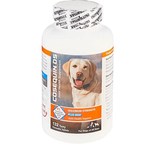cosequin ds for dogs cosequin 174 ds plus msm chewable tablets 132 count