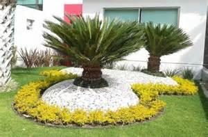 Decoración de palmas sica con piedras de rio y cemento hecho en forma