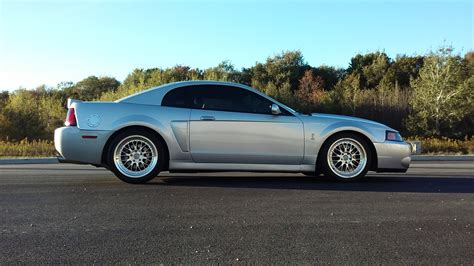 2003 Mustang Cobra Terminator by Wtt Want To Trade 2003 Mustang Cobra Terminator Mint