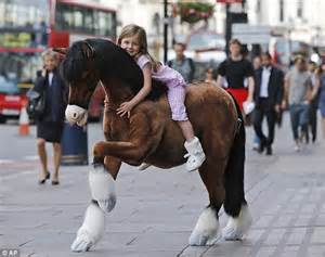 hamleys lottie doll my not so pony what every will want for