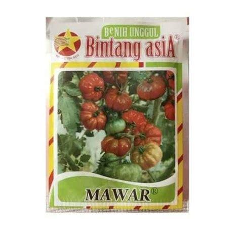 Jual Bibit Bunga Mawar Di Makassar jual benih tomat mawar 10 gram bintang asia bibit
