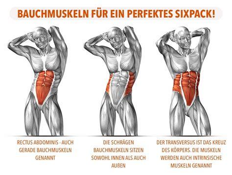 bauchmuskeln trainieren zu hause bauchmuskel g 252 rtel bauchmuskeln trainieren zu hause