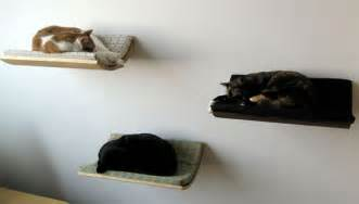 cat wall furniture curve wall mounted cat bed gives your pets their own