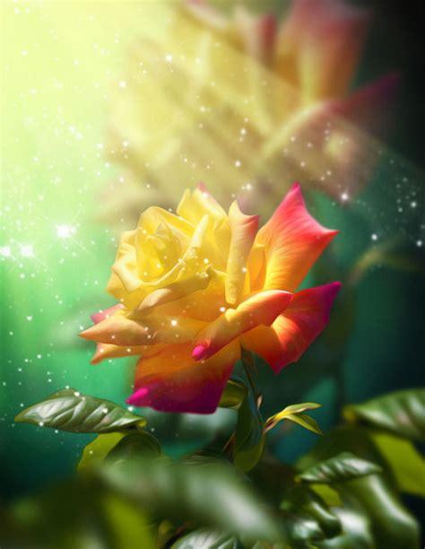 imagenes muy reflexivas 90 im 225 genes y mensajes con flores hermosas ex 243 ticas con