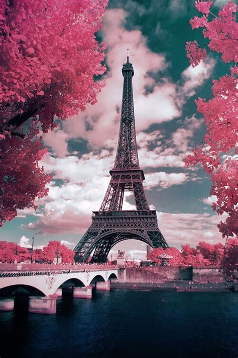 Pariss Pink B Day Swag by Eiffel Tower Pink Flowers Eiffel Tower