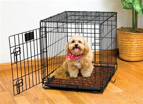 Pets At Home Crate Mat by Crate Mat Rpm Drymate Waterproof Products For Your