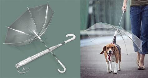 puppy umbrella umbrellas