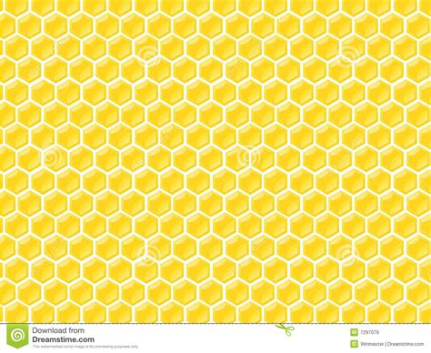 honey pattern vector honey chamber pattern stock vector illustration of field