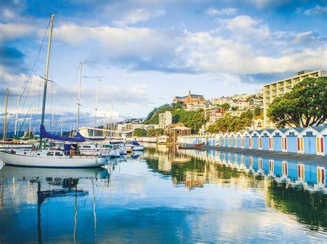 boat cruise wellington harbour wellington half day sightseeing new zealand tour anzcro