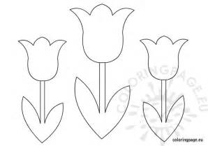 tulip template tulips flower coloring page