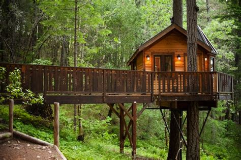 luxury tree houses gling