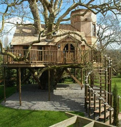 tree house home beautiful tree houses damn cool pictures
