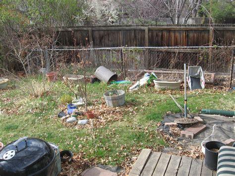 backyard pic gardening an overabundance of curiosity