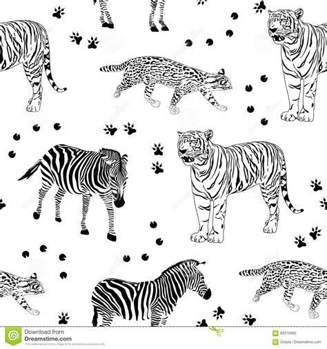 dot pattern bruise tiger cartoons illustrations vector stock images