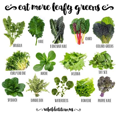 leafy greens of all kinds nutritious spinach kale