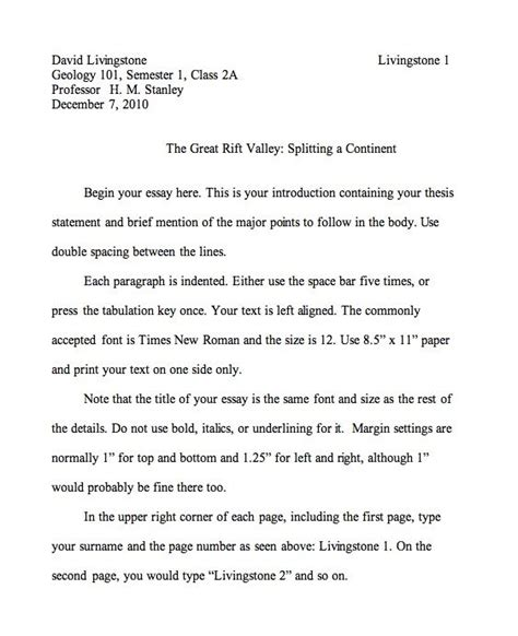 Format Of Essay Writing In English | essay format exle how do i format an essay english