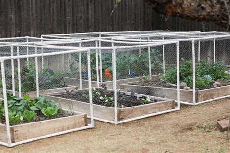 Using Pvc Frames And Shade Cloth Chicken Wire To Protect Pvc Pipe Vegetable Garden