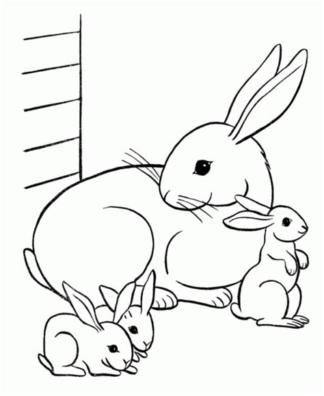 Free Coloring Pages Of Rabbit Bunny Coloring Pages Free