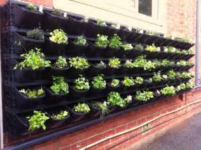 Vertical Vegetable Garden Design Ideas Vegetable GardenHow