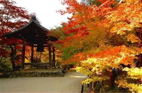 Langit Japan P keindahan yang menakjubkan saat musim gugur ema pos