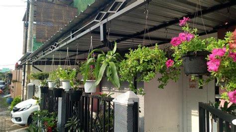 tanaman hias gantung murah cat rumah minimalis