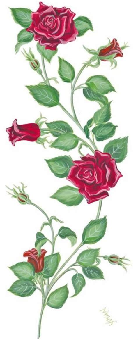 vine with roses tattoo designs design with vines ideas