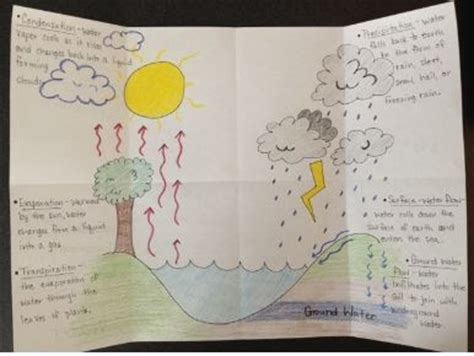 water cycle foldable template gallery templates design ideas