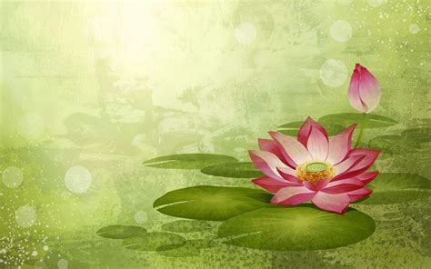 Wallpaper Lotus Flower Design | lotus flower wallpapers wallpaper cave