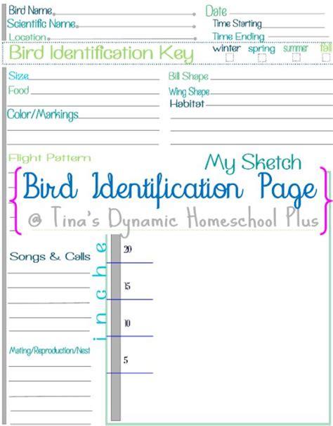 printable bird journal 47 best birding journals images on pinterest animal