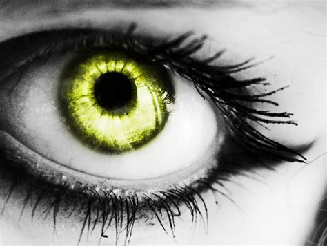 gold eye wallpaper picturespool beautiful eyes wallpapers