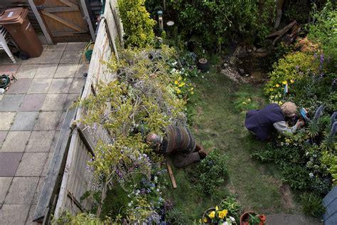 gardening  wildlife  rspb