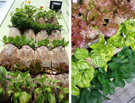 Vertical Garden Cheap Vertical Gardening And S Summer Of Doing
