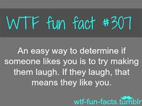 i facts more of wtf fun facts are coming here funny and