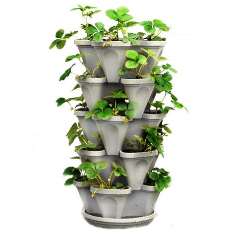 Garden Wall Planters Plastic by Pride Garden Products Mela 8 1 2 In Purple Plastic Wall