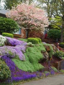 landscaping ground cover ideas landscape that has form tree house boulders steps