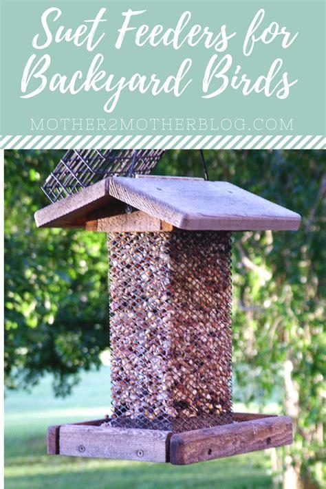 Backyard Bird Feeders by Using Suet Feeders For Backyard Birds Mother2motherblog