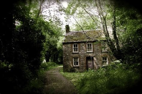 ivy and stone home on instagram 1000 images about old stone houses on pinterest old
