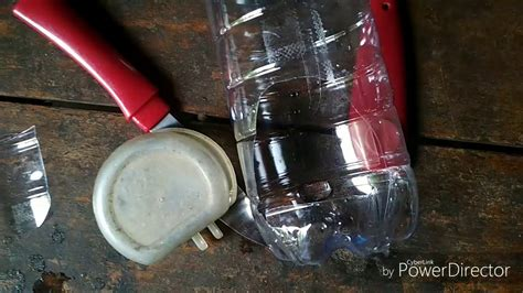 Tempat Pakan Burung membuat tempat pakan burung otomatis dari botol bekas