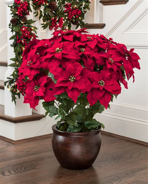 extra large premier silk poinsettia plant at