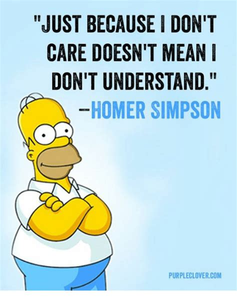 Homer Meme - just because i don t care doesn t mean don t understand