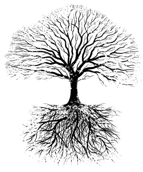design root meaning 52 best thrive images on pinterest tree of life family